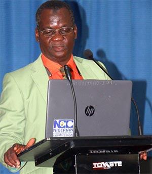 Director, DESI, Prof. Tunde Ogunsanwo