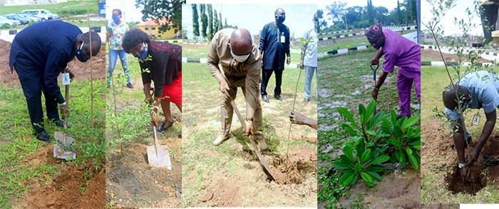 03MANAGEMENT-FLAGS-OFF-TREE-PLANTING-PROJECT